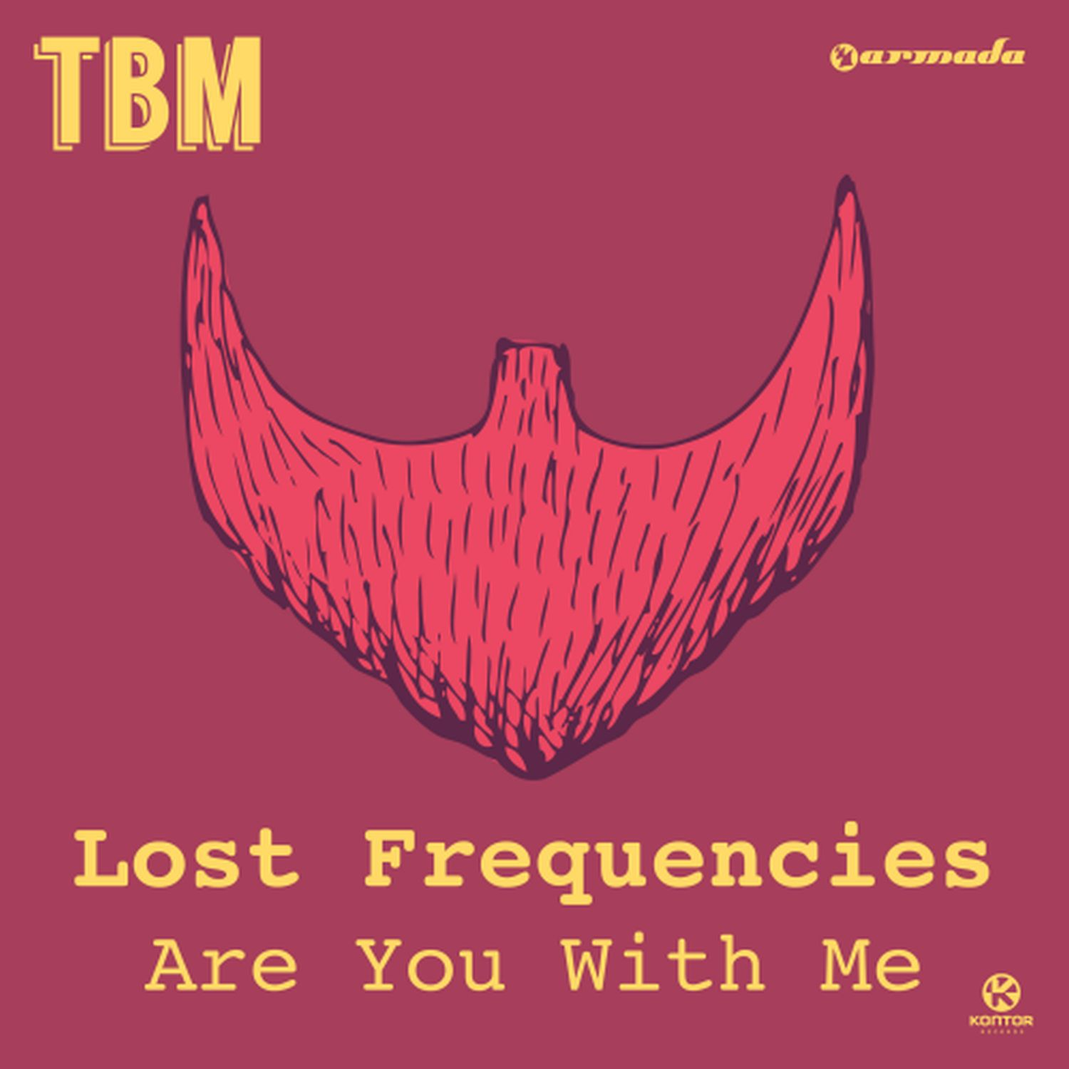 Cover: Are you with me, Lost Frequencies