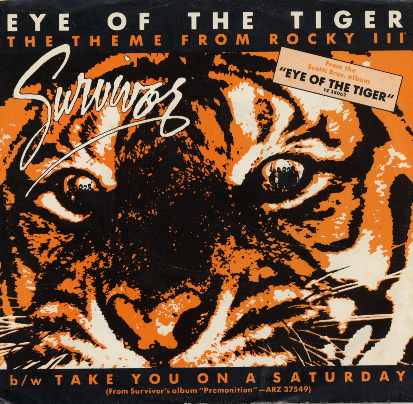 Eye of the tiger (Foto: Survivor)